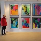 Yvette de Groot voor de grafiek van Andy Warhol